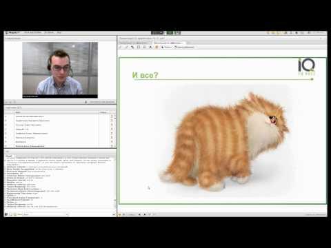 Эффективность SMM от котиков к конверсиям